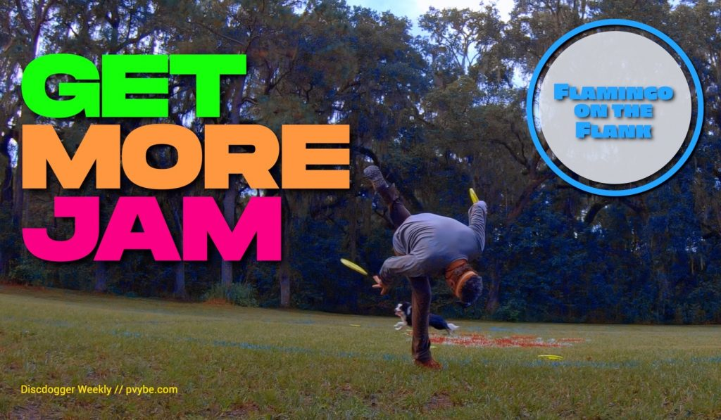 disc dog freestyle get more jam